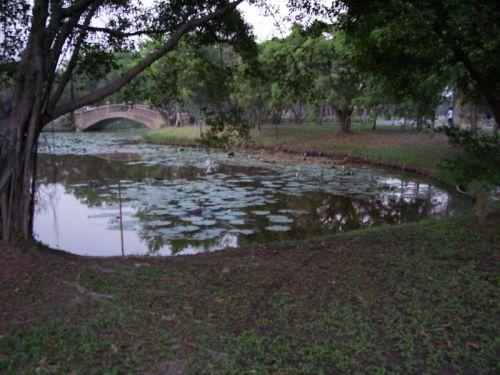 lake-2-small.jpg
